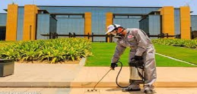 شركة تنظيف الحدائق بالرياض