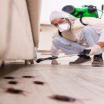 شركة مكافحة للحشرات في الرياض