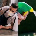 سعر رش مبيدات حشرية بالرياض